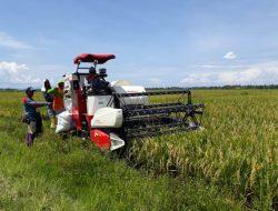 Ternyata Teknologi Pertanian Ini Sudah Digunakan Indonesia, Tanda Indonesia Gak Gaptek?