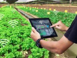 Pemerintah Dorong Petani Terapkan Digital Farming