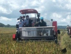 Gubernur NTT Janji Bakal Bangun Pabrik Pakan di Sumba Tengah