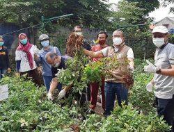 Warga Grand Prima Bintara Bekasi Ubah Fasos Fasum Terbengkalai Menjadi Area Pertanian