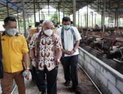 Pertamina Serahkan Bantuan Rp20,6 Miliar kepada 206 Peternak Kaltim