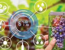Tahun 2021, Agritech Jadi Akselerator Pertanian 4.0