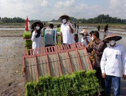 Program Agro Solution Bakal Buat Petani di Banyuwangi Kebanjiran Hasil Panen