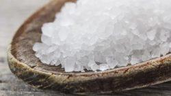 Garam Laut Juga Bisa Dijadikan Pupuk Tanaman Loh, Begini Cara Penggunaannya