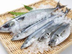 Masih Banyak Beredar, Ini Penjelasan Ahli Tentang Cara Mengetahui Ikan Tanpa Formalin