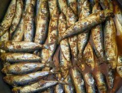 Pasar Malaysia Juga Minati Olahan Ikan Asal Kajang