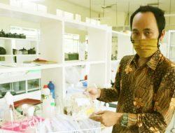 Universitas Jember Kembangkan Padi Varietas Baru dari Sumberdaya Genetik Lokal