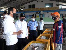Presiden Jokowi Berkunjung ke Pelabuhan Perikanan di Lamongan, Ini Janjinya untuk Nelayan