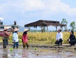 Ketua DPR RI: Pertanian Urusan Hidup dan Matinya Sebuah Bangsa