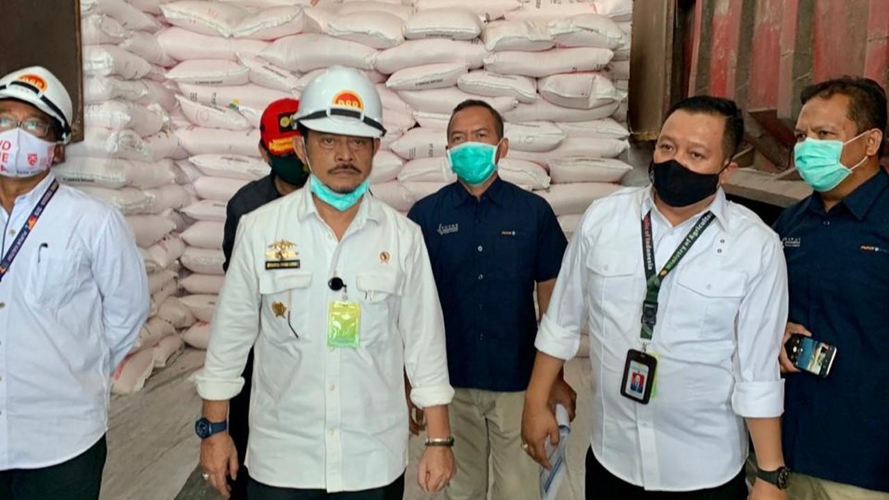 syahrul yasin limpo menteri pertanian