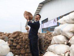 Mentan Dorong Industri Porang, Siap Ekspor ke Seluruh Pasar Mancanegara