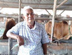 Haji Samud Siapkan 400 Ekor Sapi untuk Dijual Jelang Iduladha