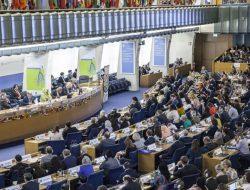 Terpilih Mewakili Asia sebagai Anggota Dewan FAO (2021-2024), Mentan: Indonesia Diakui