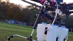 Pertimbangkan Penggunaan Drone, Upaya Distan HSU Basmi Hama di Lahan Pertanian
