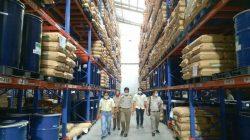 ekspor kelapa manado