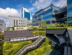 Edible Garden City Sulap Atap Funan Mal Menjadi Kebun Sayuran dan Buah