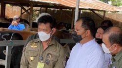 Kunjungi RPH Manggala, Mentan SYL Pastikan Kelancaran Kurban di Kota Makassar