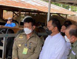 Kunjungi RPH Manggala, Mentan SYL Pastikan Kesiapan Kurban di Kota Makassar