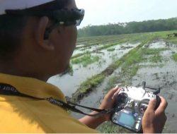 Kreatif, Petani Wonosari ini Membajak Sawahnya dengan Remote Control