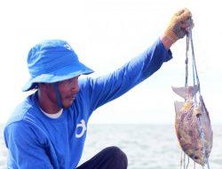 Platform Aruna Peroleh Dana US$35 Juta untuk Dukung Industri Perikanan Berkelanjutan