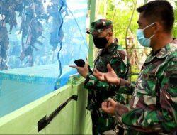 Anggota TNI Bantu Peternak Budidaya Maggot untuk Pakan Unggas dan Ikan