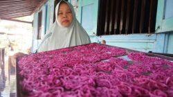 mie-buah-naga-merah-yang-diproduksi-pini-sri-warga-sragi-kecamatan-songgon-banyuwangi