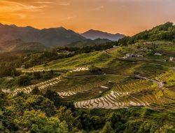 Indonesia Sering Disebut Sebagai Negara Agraris, Ternyata Ini Alasannya