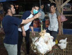 Harga Ayam Diprediksi Kian Terpuruk saat PPKM Darurat, di Ciamis Sudah Sentuh Rp13 Ribu