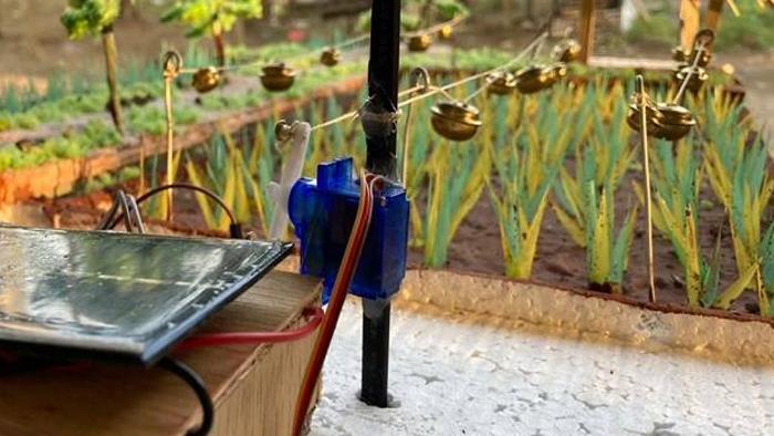 Alat Pengusir Burung Otomatis Tenaga Surya