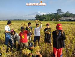 Kembangkan Pertanian Organik, Sekelompok Anak Muda Purbalingga Rintis Harvestmind