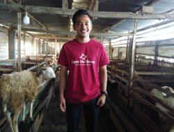 Kisah Rayndra, Peternak Domba Gibas yang Kantongi Omzet Ratusan Juta