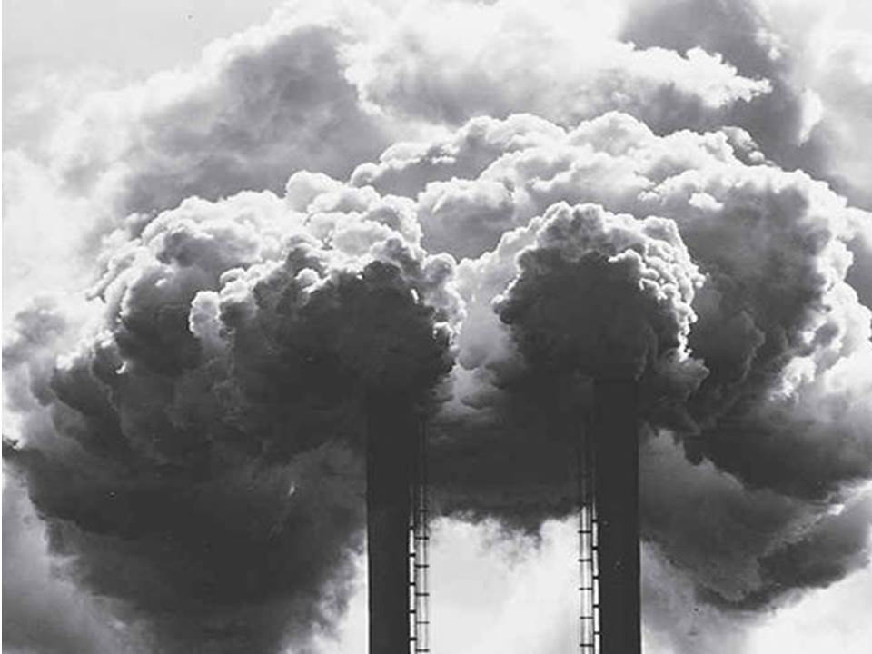 Kementerian Lingkungan Hidup Bahas Mekanisme Perdagangan Karbon dengan Bank Dunia