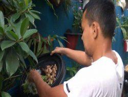 Peduli Lingkungan, Warga Sunter Agung Olah Sampah Jadi Pupuk Organik