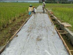 Dorong Produktivitas Petani, Kementan Jalankan Program Jalan Usaha Tani di Serang