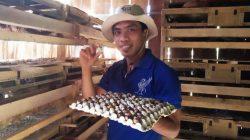 Muhlis, petani millenial asal Kabupaten Bantaeng,