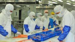 Ekspor Produk Perikanan Jateng Merosot Akibat Aturan Ketat Cina