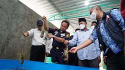 Jaga Keseimbangan Ekologi dan Ekonomi, KKP Tingkatkan Pengawasan Budidaya Lobster