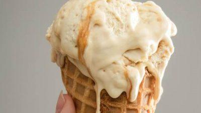 Es Krim yang Dibuat dari Belatung Lalat di Afrika Selatan
