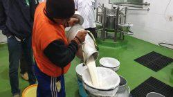 Peternak Sapi Perah di Bandung Selatan sedang menyiapkan susu untuk dijual. (Foto: beritasatu.com)