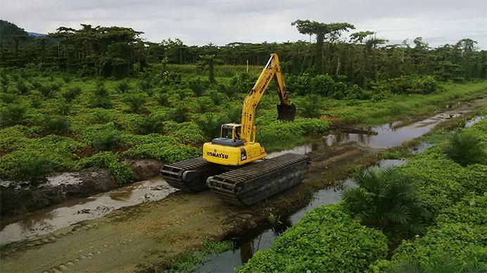 pembukaan lahan sawit