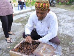 Meraup Cuan dari Beternak Lebah Madu Kelulut