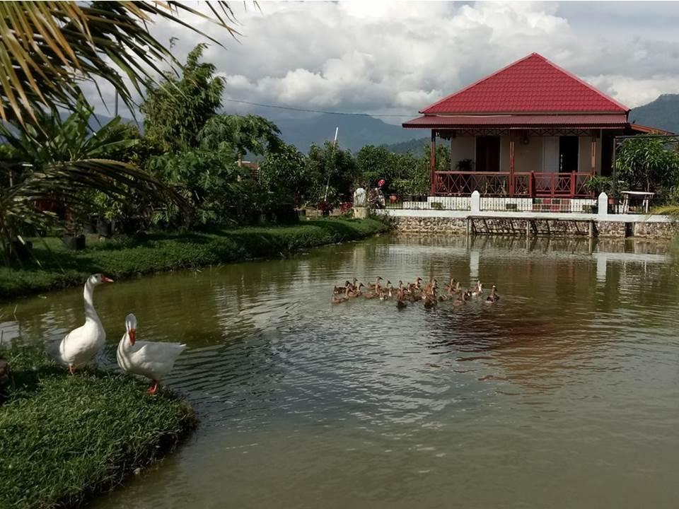 Salah satu icon destinasi dangau inspirasi di Kota Padang