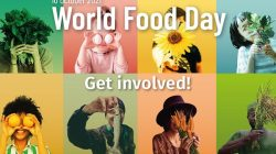 Hari Pangan Sedunia 2021: FAO Dorong Sistem Berkelanjutan di Semua Sektor Pangan