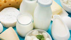 berbagai jenis olahan susu