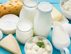 Mengenal Berbagai Jenis Olahan Susu Kaya Nutrisi